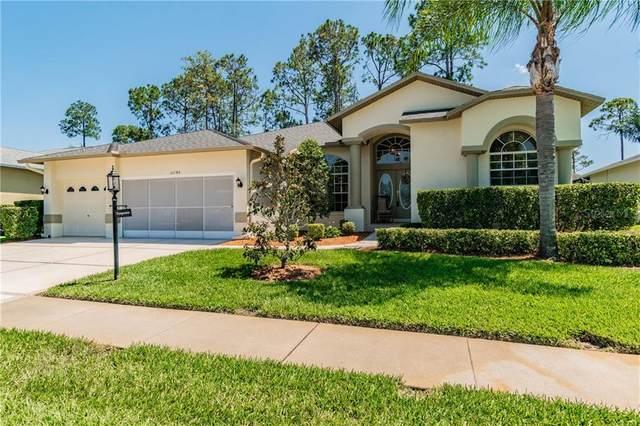 11146 Eagle Bend Drive, Hudson, FL 34667 (MLS #U8083970) :: Pepine Realty