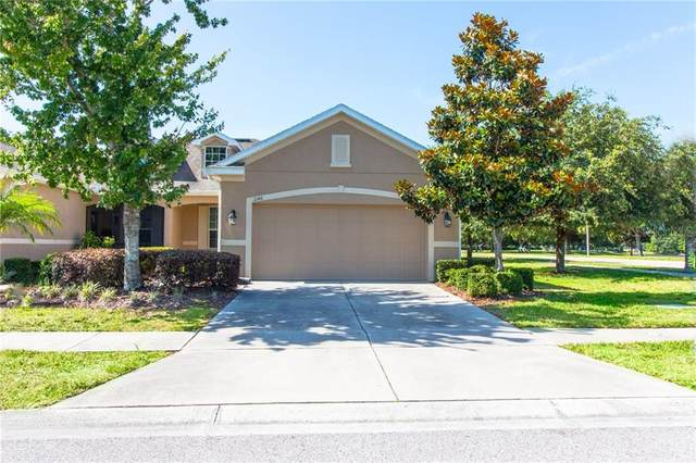 2146 Barracuda Court, Holiday, FL 34691 (MLS #U8084006) :: The Duncan Duo Team