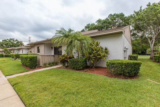 70 Michaels Circle, Oldsmar, FL 34677 (MLS #U8084260) :: Pristine Properties