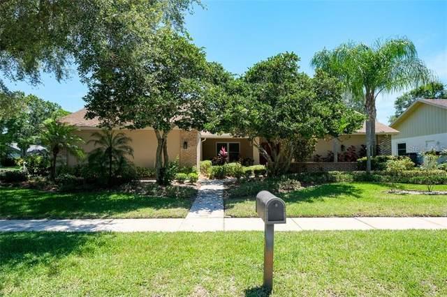 3451 Beech Trail, Clearwater, FL 33761 (MLS #U8084324) :: Premium Properties Real Estate Services