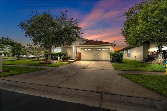 1252 Atticus Court, Wesley Chapel, FL 33543 (MLS #U8084341) :: Team Bohannon Keller Williams, Tampa Properties