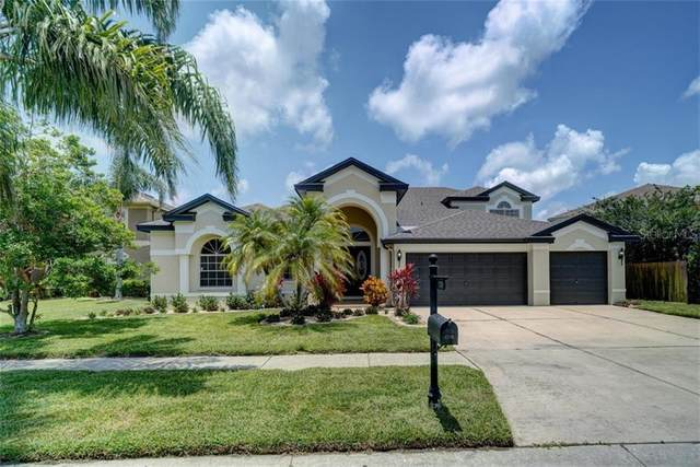 1749 Swamp Rose Lane, Trinity, FL 34655 (MLS #U8084583) :: Delgado Home Team at Keller Williams