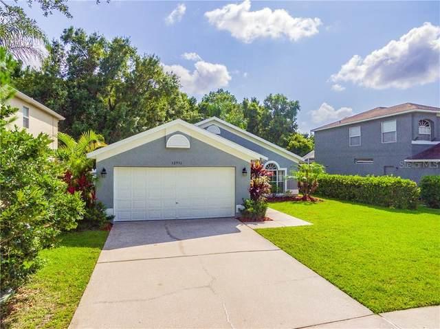 12951 Royal George Avenue, Odessa, FL 33556 (MLS #U8084645) :: Premier Home Experts