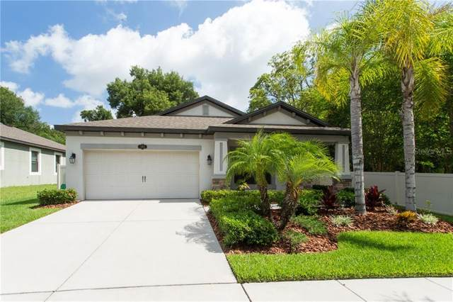 105 Dakota Hill Drive, Seffner, FL 33584 (MLS #U8085096) :: Cartwright Realty