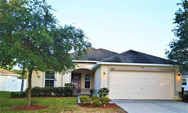 13816 Caden Glen Drive, Hudson, FL 34669 (MLS #U8085102) :: Team Bohannon Keller Williams, Tampa Properties