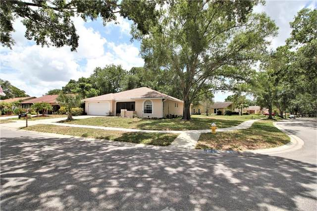 3220 Hilary Circle, Palm Harbor, FL 34684 (MLS #U8085115) :: Delgado Home Team at Keller Williams