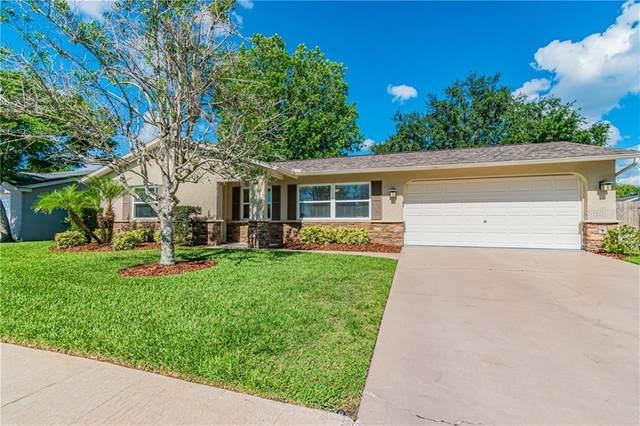 4212 Sawgrass Boulevard, New Port Richey, FL 34653 (MLS #U8085229) :: Team Bohannon Keller Williams, Tampa Properties