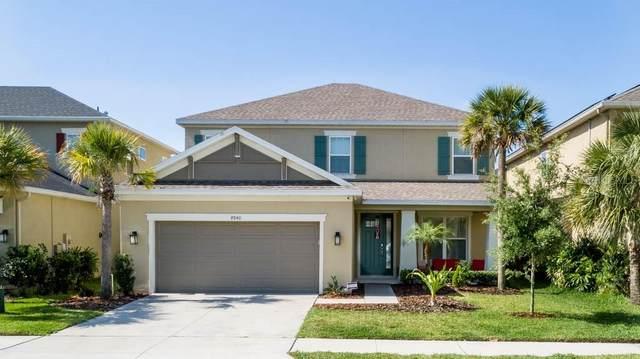 8840 Citrus Palm Drive, Tampa, FL 33626 (MLS #U8085277) :: Heart & Home Group