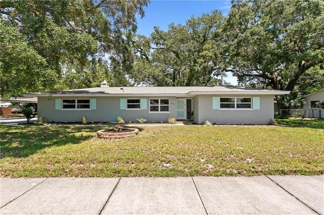 669 Patricia Avenue, Dunedin, FL 34698 (MLS #U8085284) :: Burwell Real Estate