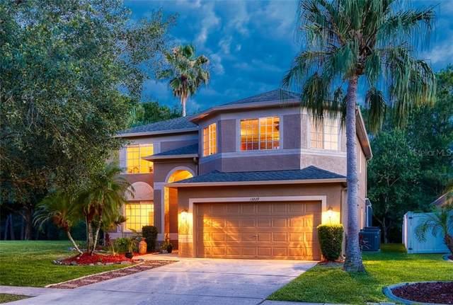 13229 Royal George Avenue, Odessa, FL 33556 (MLS #U8085292) :: Heart & Home Group