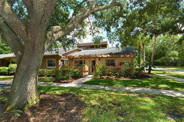 10 Ashley Lane, Oldsmar, FL 34677 (MLS #U8085298) :: The Duncan Duo Team