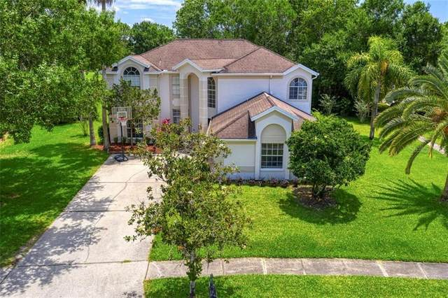 16101 Turnbury Oak Drive, Odessa, FL 33556 (MLS #U8085313) :: Heart & Home Group