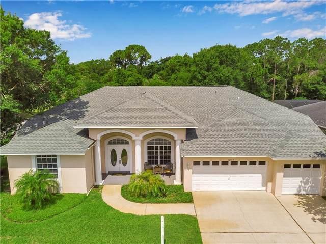 10602 Park Place Drive, Largo, FL 33778 (MLS #U8085447) :: Your Florida House Team