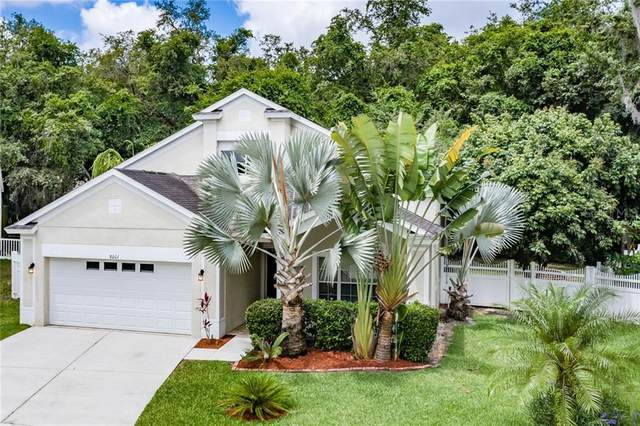 8001 Terrace Arbor Court, Tampa, FL 33637 (MLS #U8085456) :: Cartwright Realty