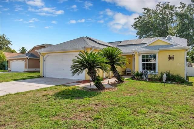 4128 Foxboro Drive, New Port Richey, FL 34653 (MLS #U8085462) :: Griffin Group