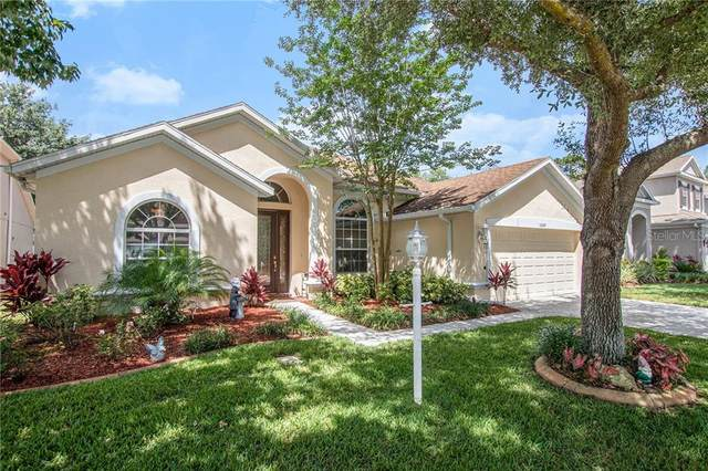 10645 Pearl Berry Loop, Land O Lakes, FL 34638 (MLS #U8085731) :: Pepine Realty