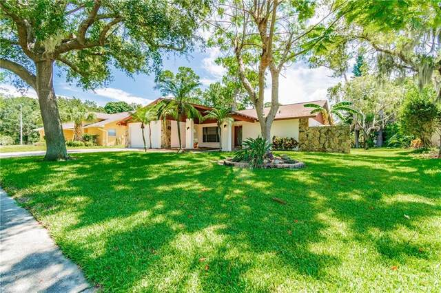 1370 Riverside Drive, Tarpon Springs, FL 34689 (MLS #U8085743) :: CENTURY 21 OneBlue