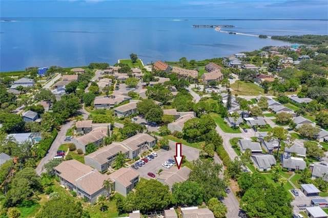 401 Windrush Bay Drive, Tarpon Springs, FL 34689 (MLS #U8085746) :: Burwell Real Estate
