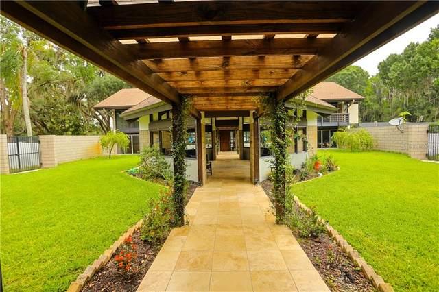 8825 Osceola Acres Trail, Odessa, FL 33556 (MLS #U8085750) :: Premier Home Experts