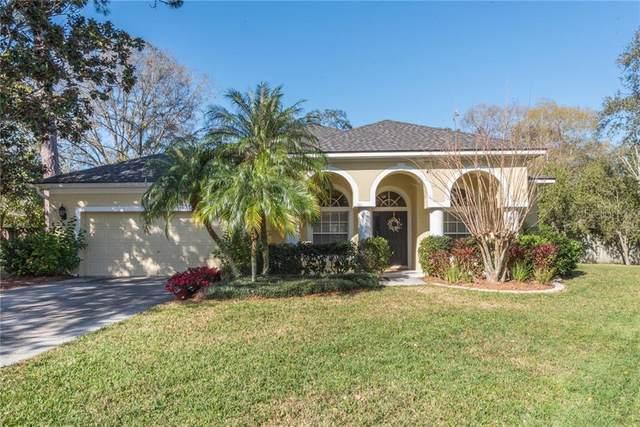 6409 Nikki Lane, Tampa, FL 33625 (MLS #U8085767) :: Cartwright Realty