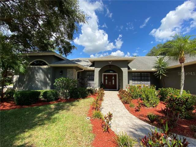 695 Samantha Drive, Palm Harbor, FL 34683 (MLS #U8085773) :: Godwin Realty Group