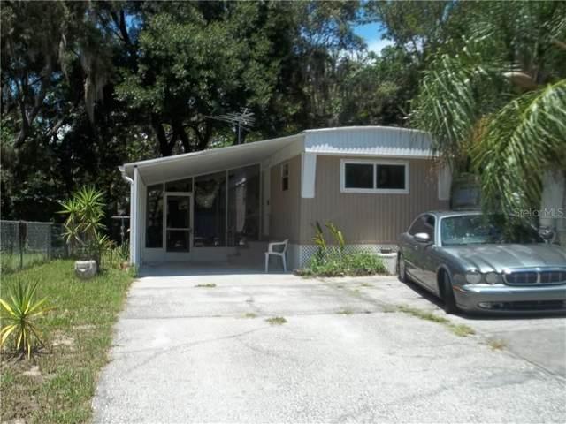 9239 Teak Street, New Port Richey, FL 34654 (MLS #U8085797) :: Team Buky