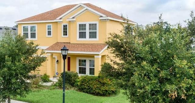 10429 Flagstaff Falls Avenue, Riverview, FL 33578 (MLS #U8085864) :: Cartwright Realty