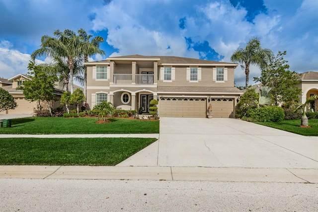 3011 Downan Point Drive, Land O Lakes, FL 34638 (MLS #U8086035) :: Premier Home Experts