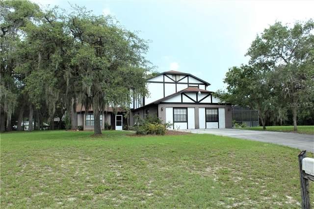 10544 Brian Lane, New Port Richey, FL 34654 (MLS #U8086050) :: Griffin Group