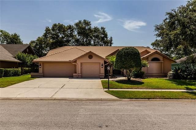 727 Samantha Drive, Palm Harbor, FL 34683 (MLS #U8086081) :: Team Bohannon Keller Williams, Tampa Properties
