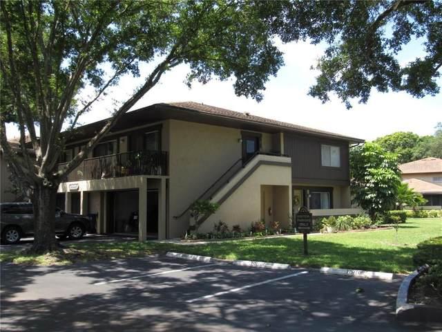 2939 Lichen Lane D, Clearwater, FL 33760 (MLS #U8086096) :: Heckler Realty