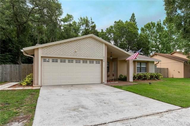 2156 Little Brook Lane, Clearwater, FL 33763 (MLS #U8086202) :: Team Bohannon Keller Williams, Tampa Properties