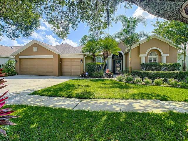 10212 Newington Place, Tampa, FL 33626 (MLS #U8086241) :: Cartwright Realty