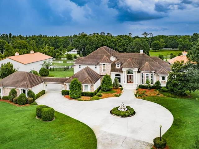 22515 Hale Road, Land O Lakes, FL 34639 (MLS #U8086280) :: Griffin Group
