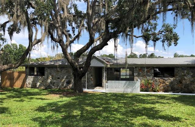 12306 Clear Lake Drive, New Port Richey, FL 34654 (MLS #U8086296) :: Lucido Global