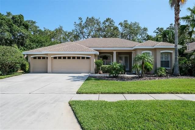 397 Charleston Avenue, Crystal Beach, FL 34681 (MLS #U8086386) :: Team Bohannon Keller Williams, Tampa Properties