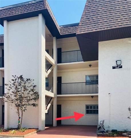 208 NE Monroe Circle N #103, St Petersburg, FL 33702 (MLS #U8086447) :: Cartwright Realty
