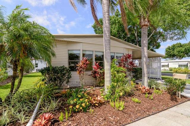 128 Dolphin Drive S, Oldsmar, FL 34677 (MLS #U8086463) :: Your Florida House Team
