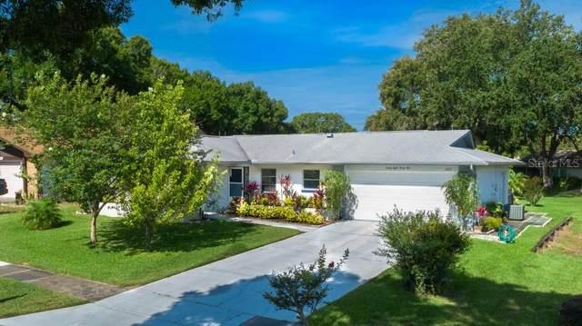 2831 Thistle Court E, Palm Harbor, FL 34684 (MLS #U8086494) :: Team Bohannon Keller Williams, Tampa Properties