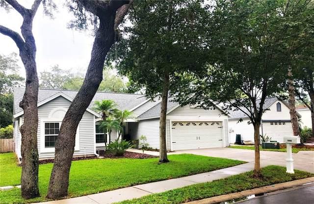 1640 Countrywood Street, Tarpon Springs, FL 34689 (MLS #U8086676) :: Alpha Equity Team