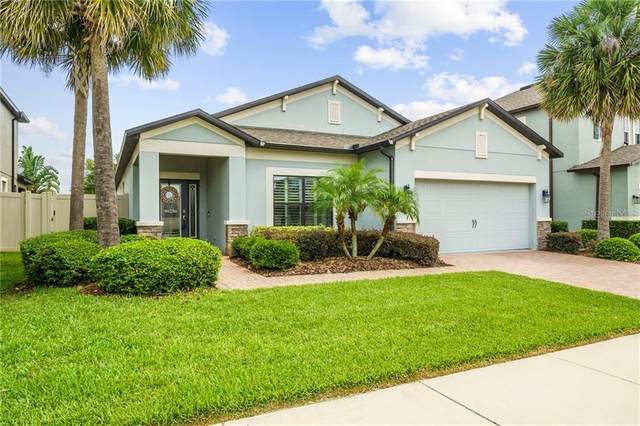 1661 Feather Grass Loop, Lutz, FL 33558 (MLS #U8086680) :: Cartwright Realty