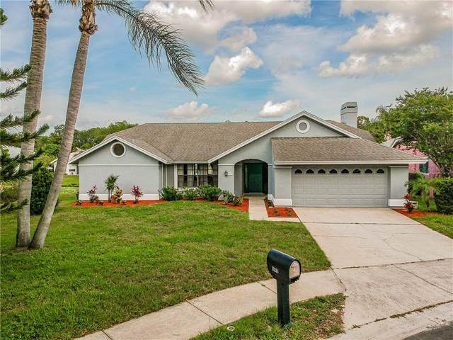 3142 Sandhill Drive, Holiday, FL 34691 (MLS #U8086736) :: Griffin Group