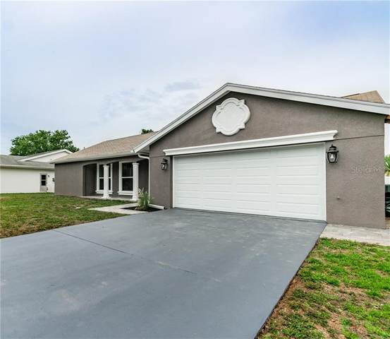 4313 Pinefield Avenue, Holiday, FL 34691 (MLS #U8086824) :: Griffin Group
