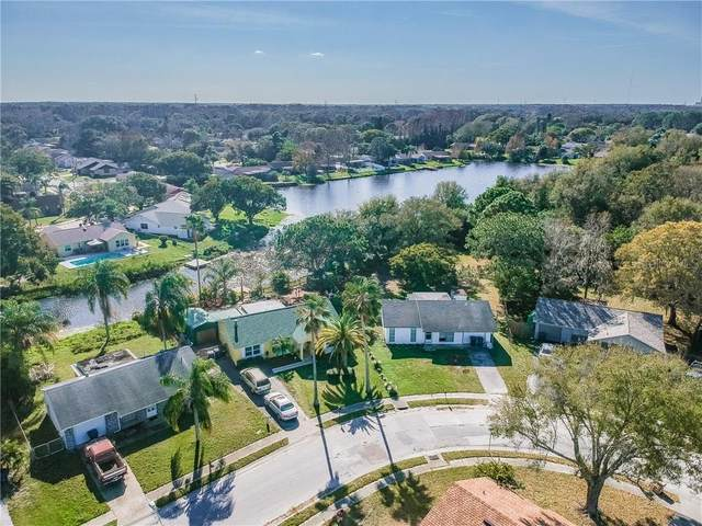 Address Not Published, New Port Richey, FL 34655 (MLS #U8087239) :: Griffin Group