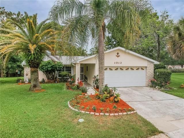 1012 Tarns Court, Palm Harbor, FL 34684 (MLS #U8087251) :: Delgado Home Team at Keller Williams