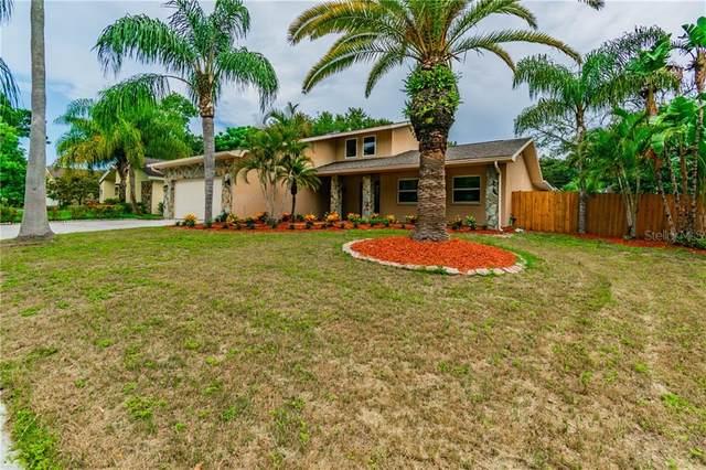 2271 Adam Court, Palm Harbor, FL 34683 (MLS #U8087352) :: Team Bohannon Keller Williams, Tampa Properties