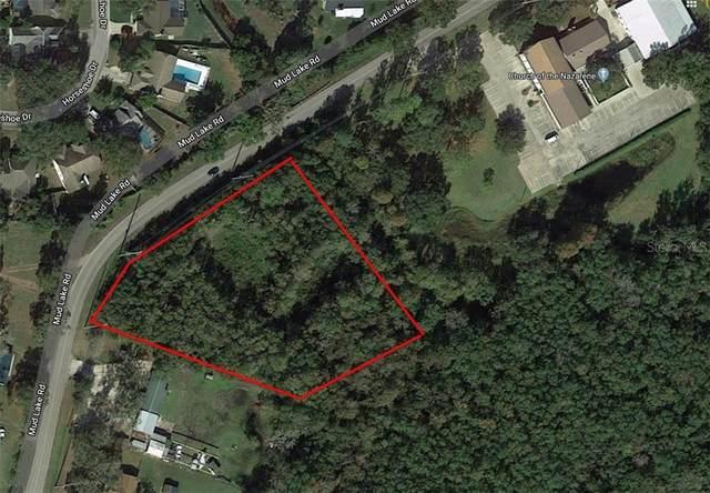 Mud Lake Road, Plant City, FL 33566 (MLS #U8087369) :: Griffin Group
