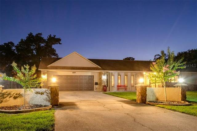 113 Garland Circle, Palm Harbor, FL 34683 (MLS #U8087924) :: Your Florida House Team