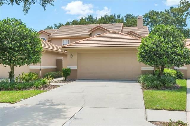 17535 Fairmeadow Drive, Tampa, FL 33647 (MLS #U8088018) :: Lockhart & Walseth Team, Realtors