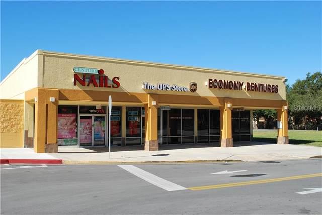 12125 Little Road, Hudson, FL 34667 (MLS #U8088091) :: Griffin Group